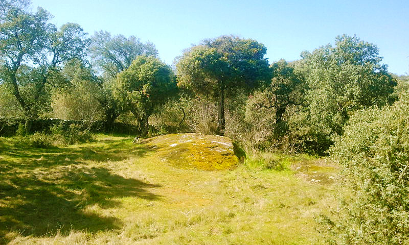Finca en Pelahustán (Toledo)