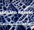 Kuroki_Chisato_2_s