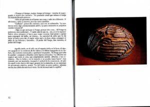Libro Vulcano