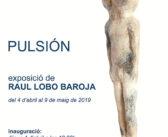 Exposición de Raúl Lobo Baroja