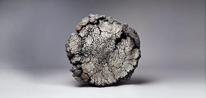 Exposición de Pascale Lehmann