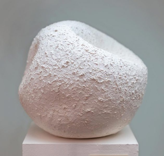 16-c-palma-roca-blanca