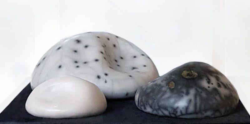 19-c-palma-rocas-vivas