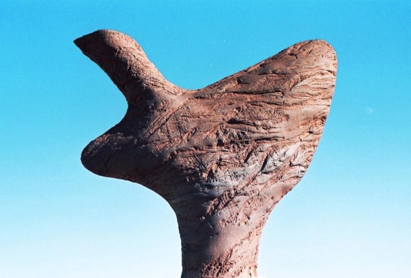 Ciprés de Tortosa
