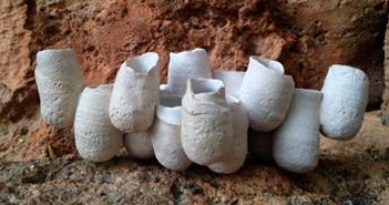 cerámica de Maria Ramis