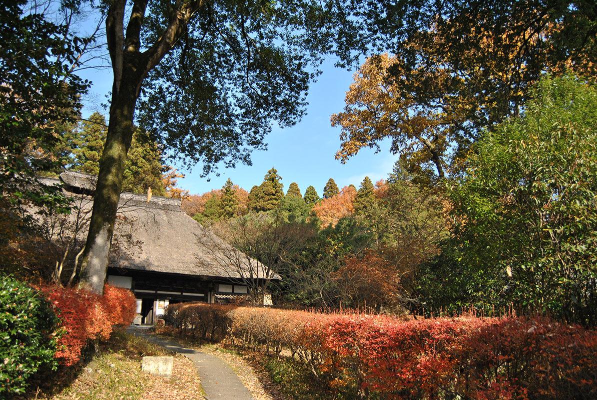 Museo Hamada Shoji