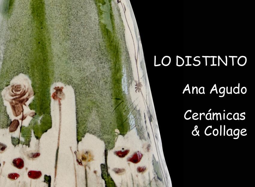 Exposición de Ana Agudo